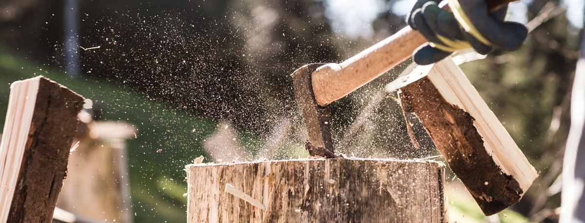 Buy Logs Online Free Delivery Bulk Kiln Dried Firewood