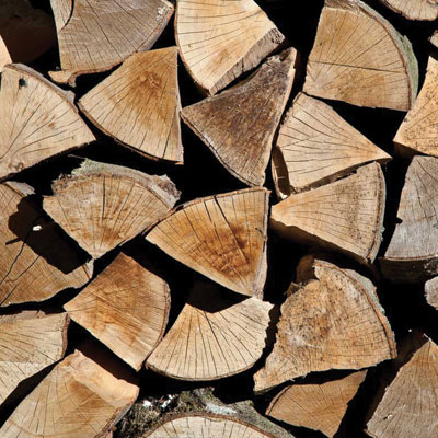 Premium Kiln Dried Hardwood Logs