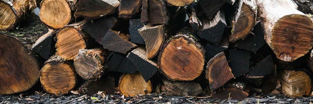 Ban-on-the-sale-of-wet-logs