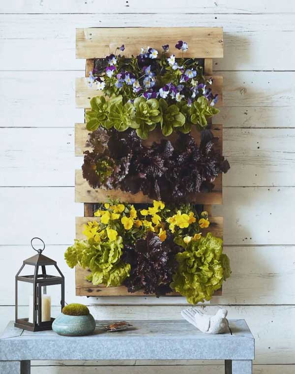 Pallet-planter-fixed-on-a-wooden-wall