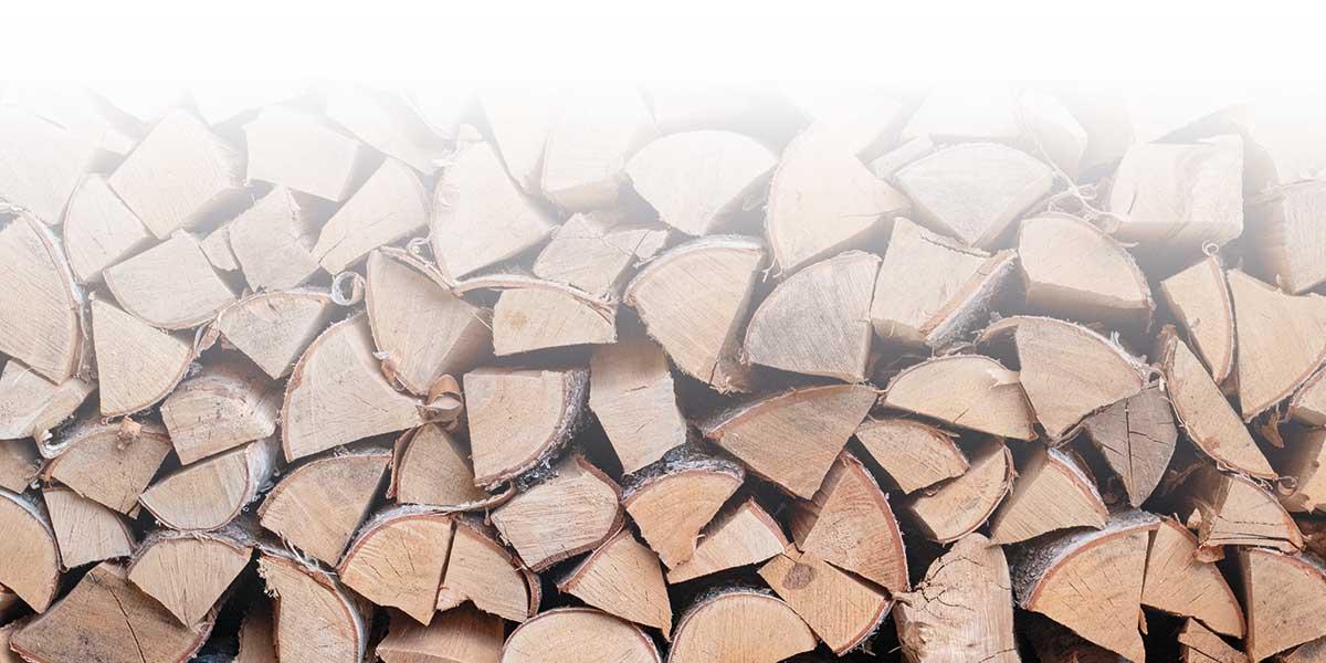 Log Supplier